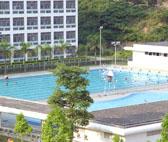 标准泳池类